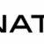 Logo Natixis nouveau